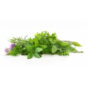 Herbs and garnishes